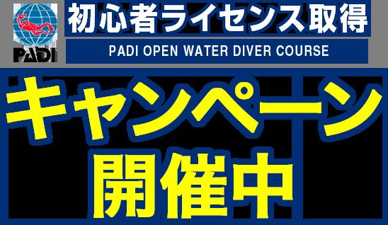 PADI 初心者ライセンス取得キャンペーン開催中