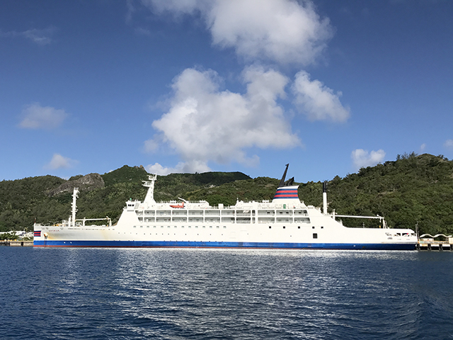 世界遺産の海でダイビング! 小笠原ダイビングツアー